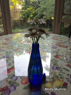 Daisies in Blue Glass